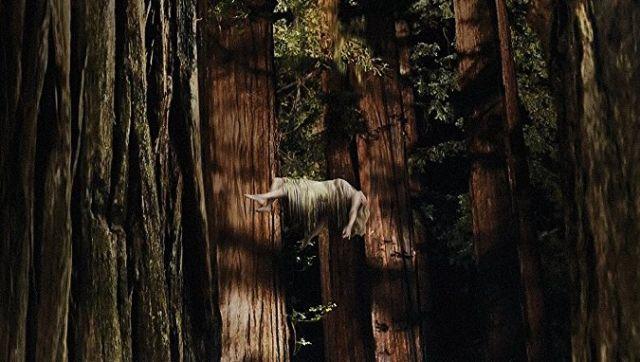 Woodshock_opt